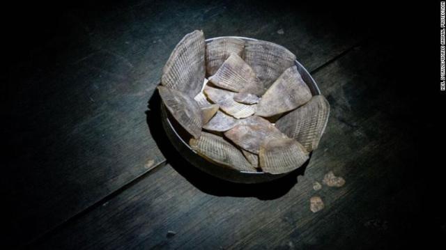 Le squame di pangolino sono ampiamente utilizzate nella medicina asiatica per curare l'impotenza e l'infertilità.