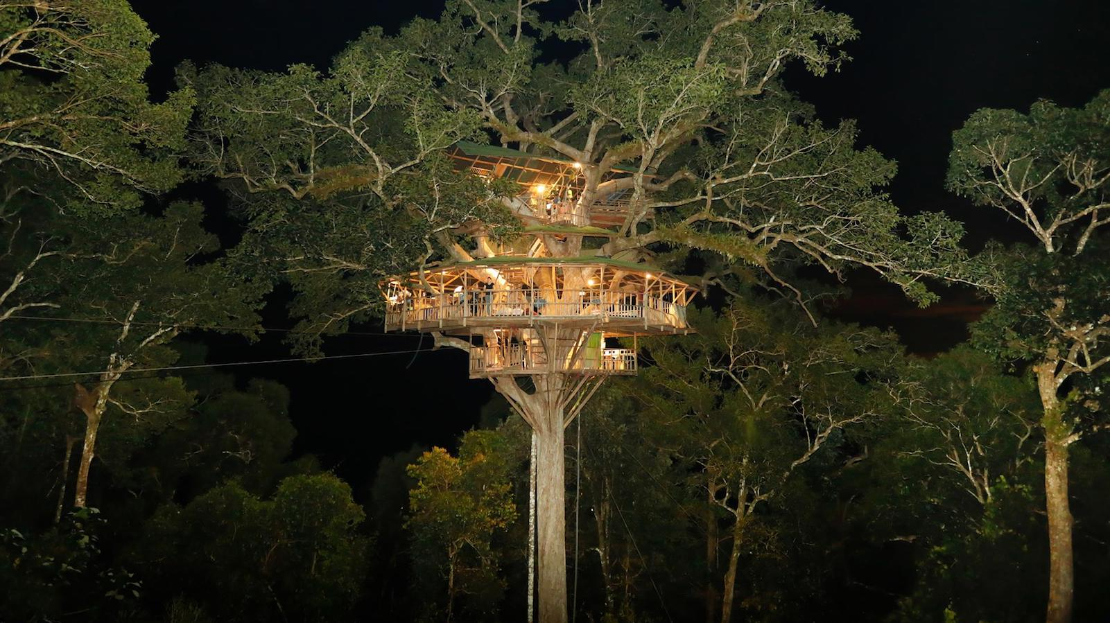 Gibbon Experience In Laos Stay In The World S Tallest Treehouses Cnn Travel