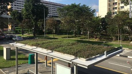 A green roof was also installed on the top of a bus stop in Kuala Lumpur.
