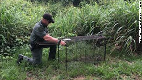 The Highlands County Sheriff's Office said that the authorities have been able to make six dogs in the area