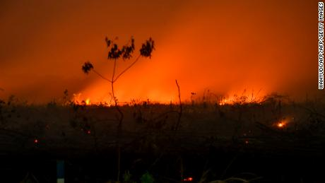 A forest fire in Sumatra, Indonesia, on September 9, 2019.