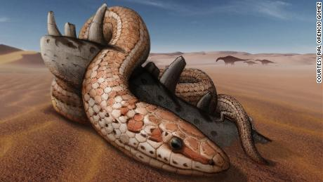 Snakes had back legs for 70 million years before losing them, new fossil shows