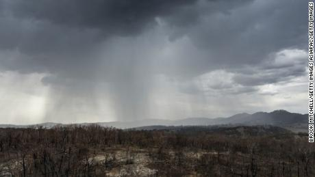The rain falls on the drought and the country devastated by fire near the city of Tamworth, New South Wales, on January 15, 2020.