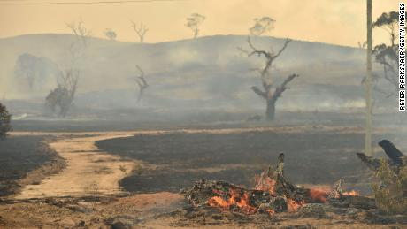 A bushfire burns near the town of Bumbalong, south of Canberra, on February 2, 2020.
