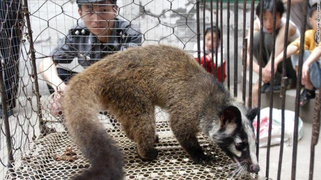 Foto tirada em maio de 2003 mostra um policial vigiando um gato civeta capturado na selva por um fazendeiro em Wuhan, província de Hubei, no centro da China.