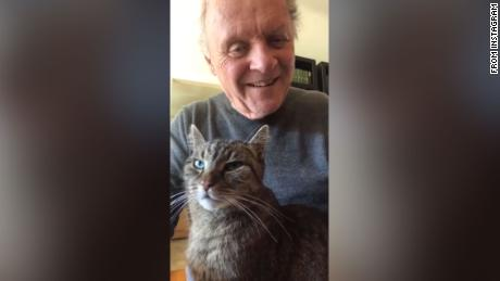 Anthony Hopkins spends hours playing the piano for his cat