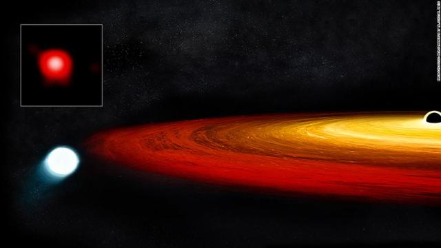 This illustration shows a star's core, known as a white dwarf, pulled into orbit around a black hole. During each orbit, the black hole rips off more material from the star and pulls it into a glowing disk of material around the black hole. Before its encounter with the black hole, the star was a red giant in the last stages of stellar evolution.