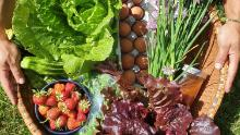 Fruits, vegetables, herbs and eggs from Soul Fire Farm.