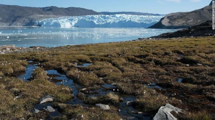 Water from the Greenland ice sheet flows through heather and peat during unseasonably warm weather on August 1, 2019 at Eqip Sermia, Greenland.