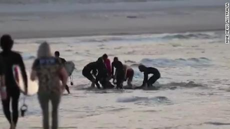 After the attack, people rushed to bring in shark bite prey.