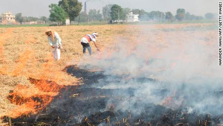 Indian farmers burn straw stubble on the outskirts of Amritsar on October 17.