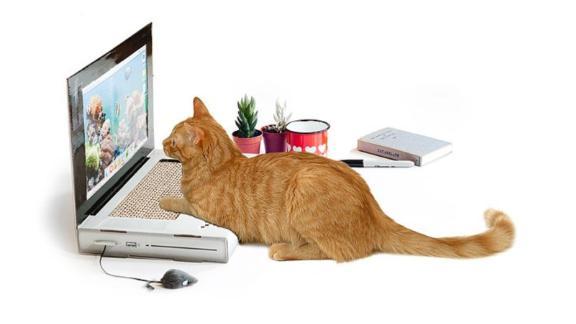 Laptop Scratching Pad