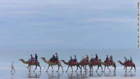 A file photo taken on May 23, 2000 shows camels carrying tourists down Broome's famous Cable Beach.