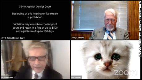 Lawyer tells judge 'I'm not a cat' after a Zoom filter mishap in virtual court hearing