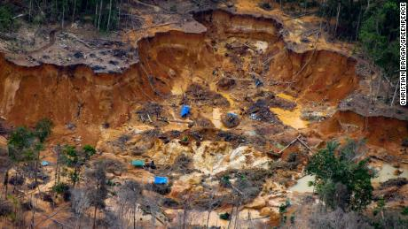 The miners have set up camps throughout the 24-million acre reserve.