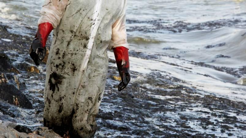 Τεράστια οικολογική καταστροφή στη Σαλαμίνα: Τι καταγγέλλει η δήμαρχος και τι απαντά η εταιρεία