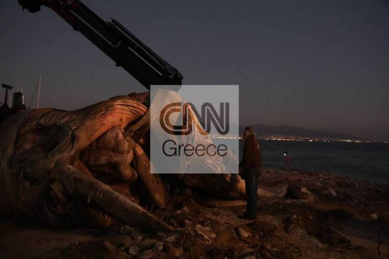 https://cdn.cnngreece.gr/media/news/2020/12/24/248133/photos/snapshot/5fe3670b48f24.jpg