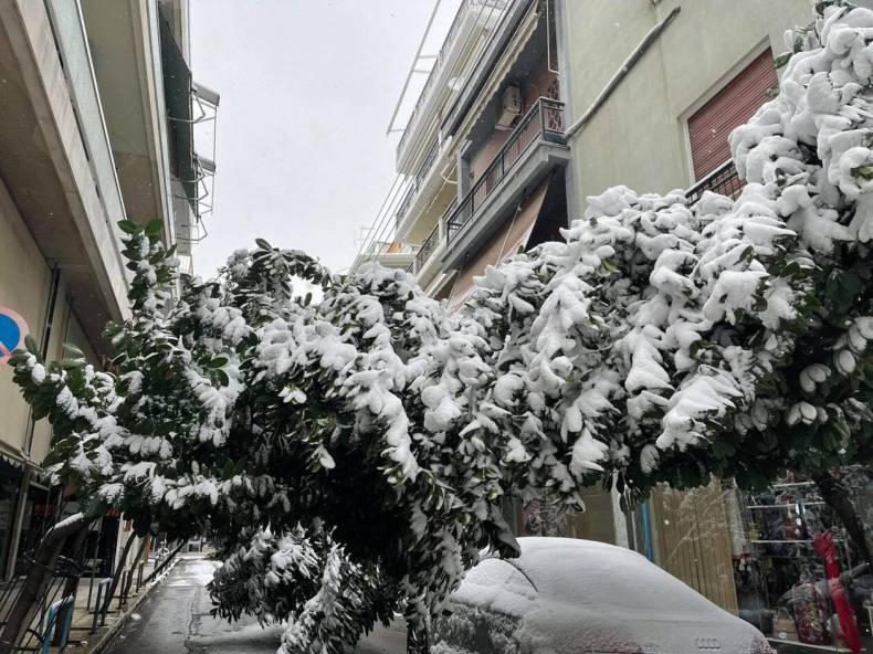 https://cdn.cnngreece.gr/media/news/2021/02/14/254480/photos/snapshot/larisa-xionia.jpg
