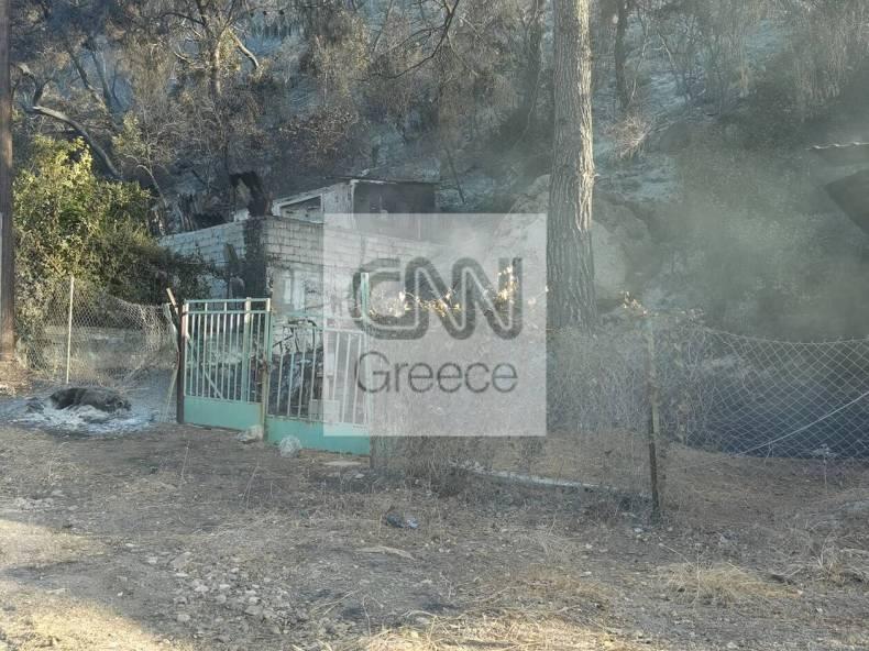 https://cdn.cnngreece.gr/media/news/2021/05/20/266726/photos/snapshot/fotia-sxino-2.jpg