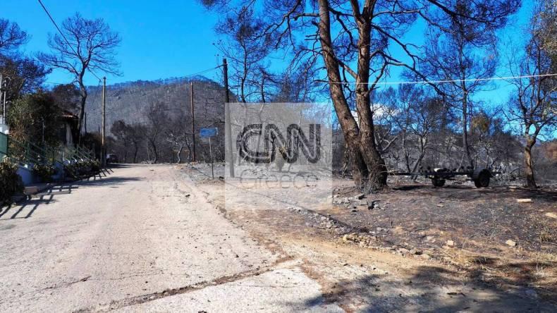 https://cdn.cnngreece.gr/media/news/2021/05/21/266765/photos/snapshot/fotia-sxino-10.jpg