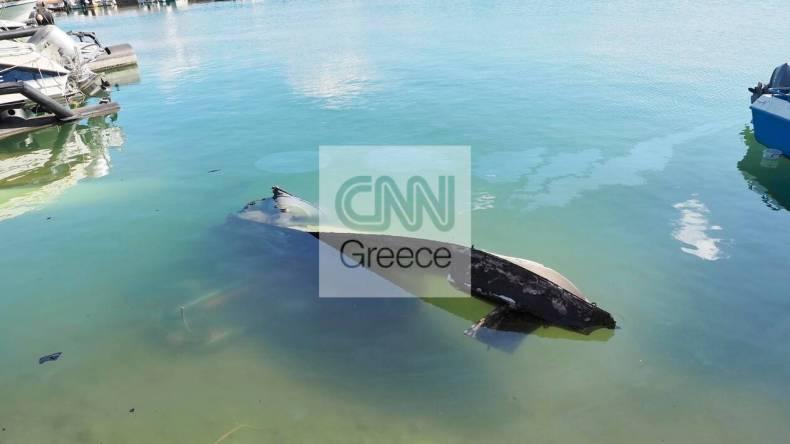 https://cdn.cnngreece.gr/media/news/2021/05/21/266765/photos/snapshot/fotia-sxinos-3.jpg