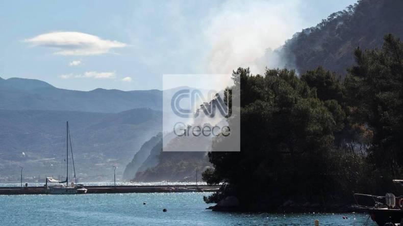 https://cdn.cnngreece.gr/media/news/2021/05/21/266765/photos/snapshot/fotia-sxinos-4.jpg