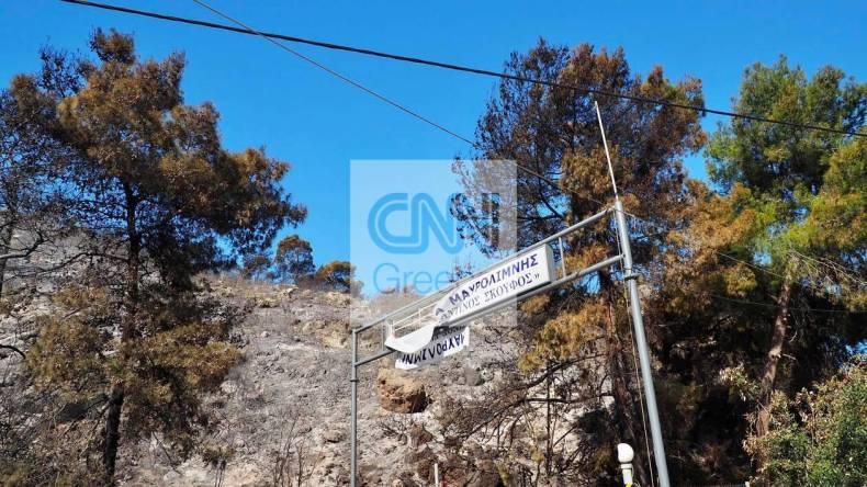 https://cdn.cnngreece.gr/media/news/2021/05/21/266854/photos/snapshot/fotia-sxinos-2.jpg