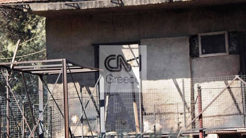 https://cdn.cnngreece.gr/media/news/2021/05/21/266854/photos/snapshot/fotia-sxinos-3-89.jpg