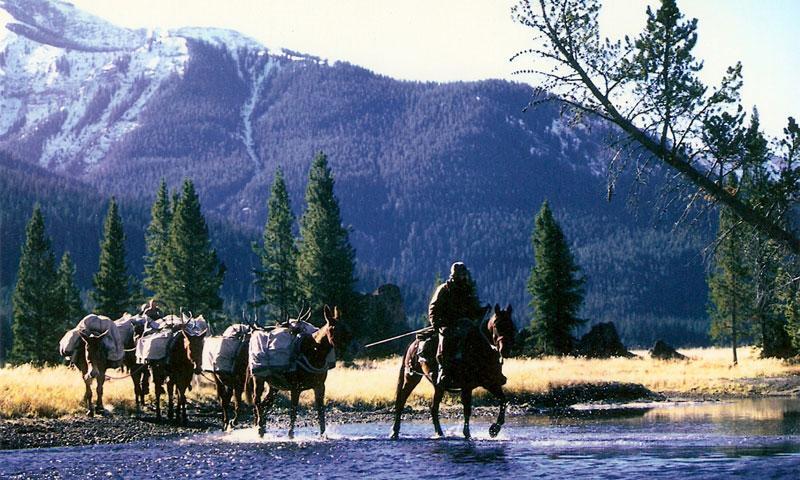 Cody Wyoming Elk  Deer Hunting Trips Outfitters  AllTrips