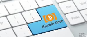 BitPay社ビザプリペイドカード、ビットコインキャッシュ導入により手数料下げ