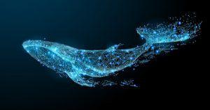 ビットコインが大口投資家『クジラ』に価格操作をされていない理由