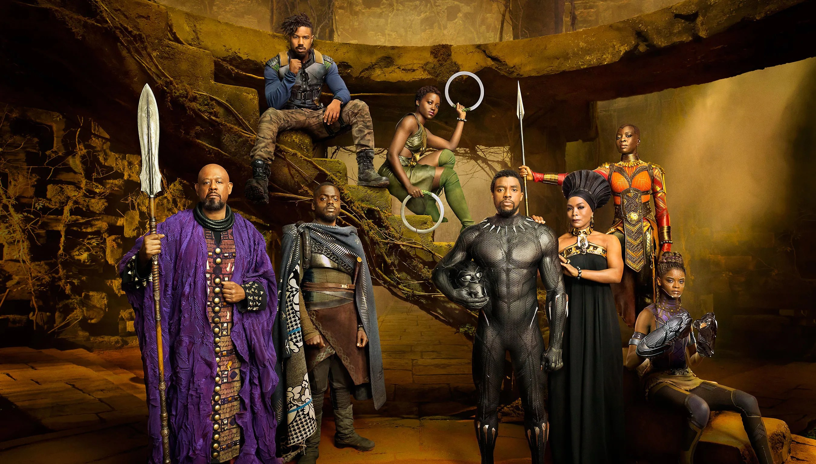 Image result for the black panther images