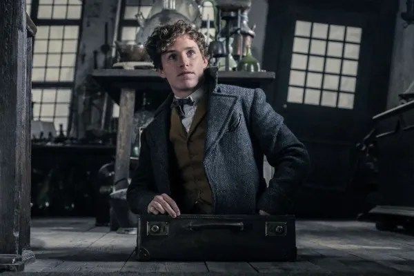 fantastic-beasts-the-crimes-of-grindelwald-eddie-redmayne-newt