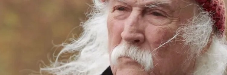 Resultado de imagen de DAVID CROSBY REMEMBER MY NAME