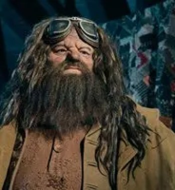 'Hagrid's Magical Creatures Motorbike Adventure': 15 Things to Know about the New Wizarding World Ride