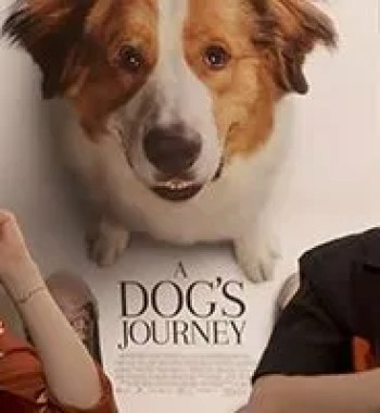 Kathryn Prescott & Henry Lau on Bonding with the Dogs for 'A Dog's Journey'