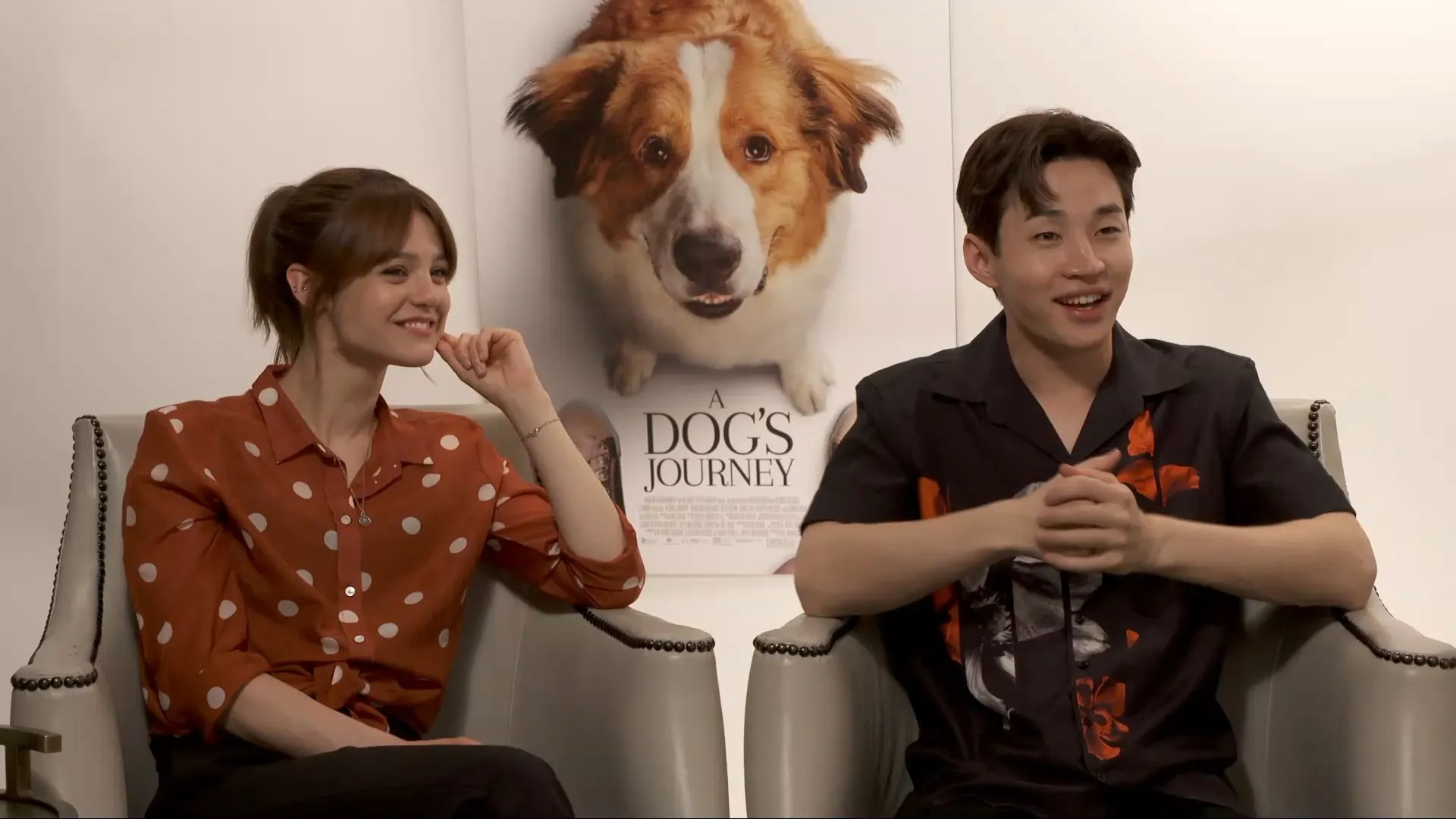 Universal Animal Wallpaper Henry Lau Amp Kathryn Prescott On A Dog S Journey And Their