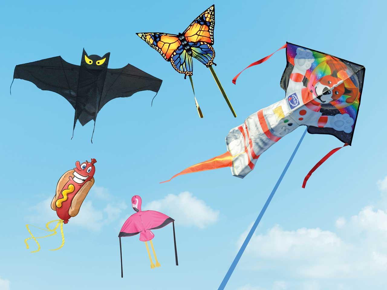 Beginner Friendly Kites For Kids