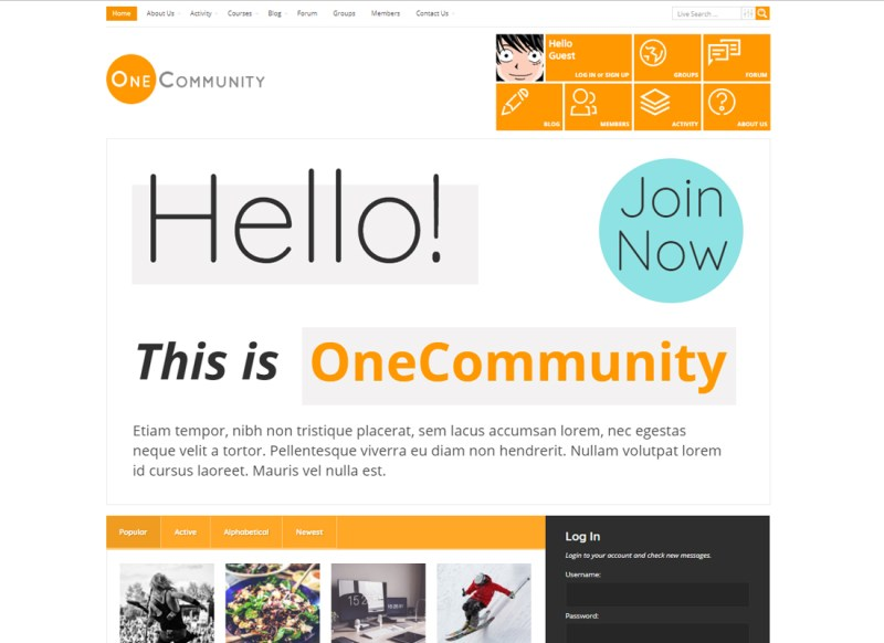 Una comunidad | BuddyPress Community e-Learning LMS Theme