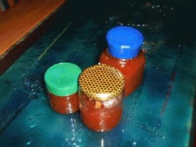 Marmellata di mele con pectina fatta in casa le Vostre