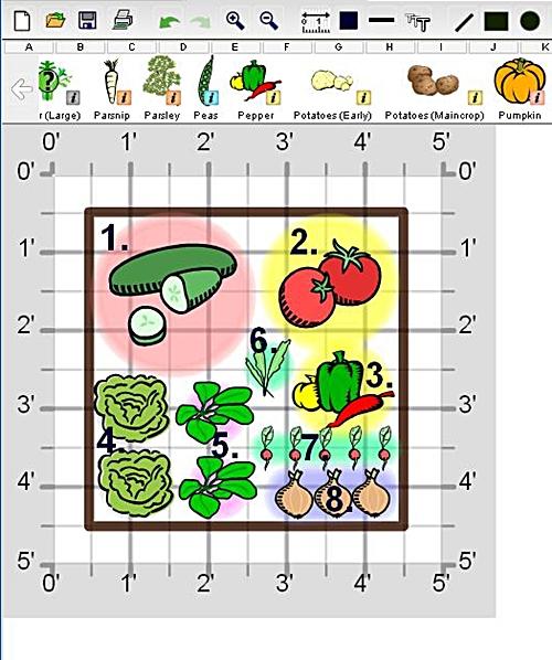 Create A Fresh Salad Garden Veggie Gardener