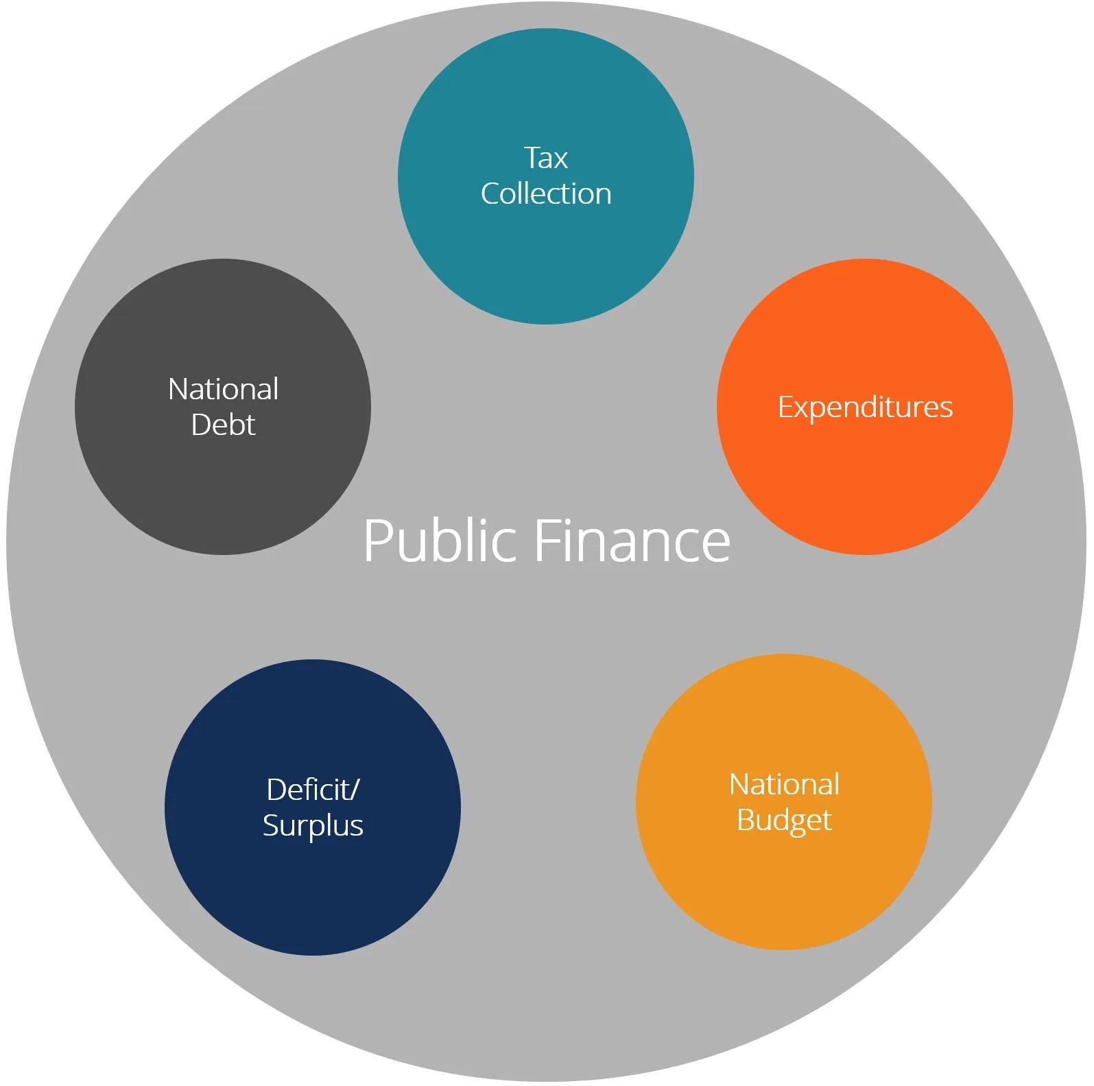 hight resolution of public finance diagram