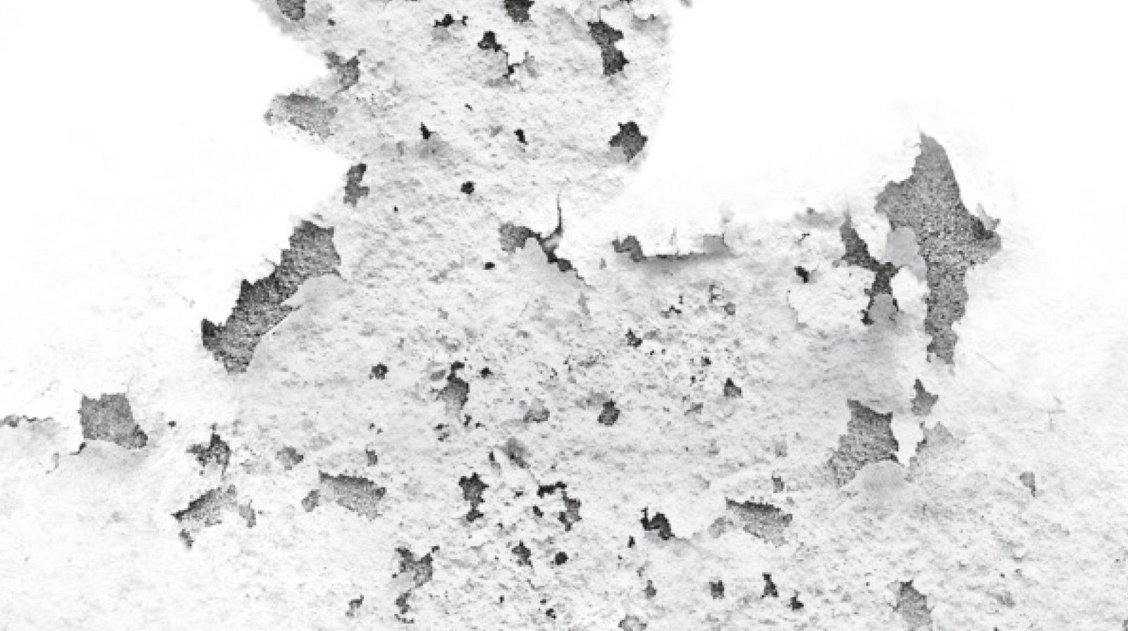 Umidit nei muri come riconoscerla  Cose di Casa