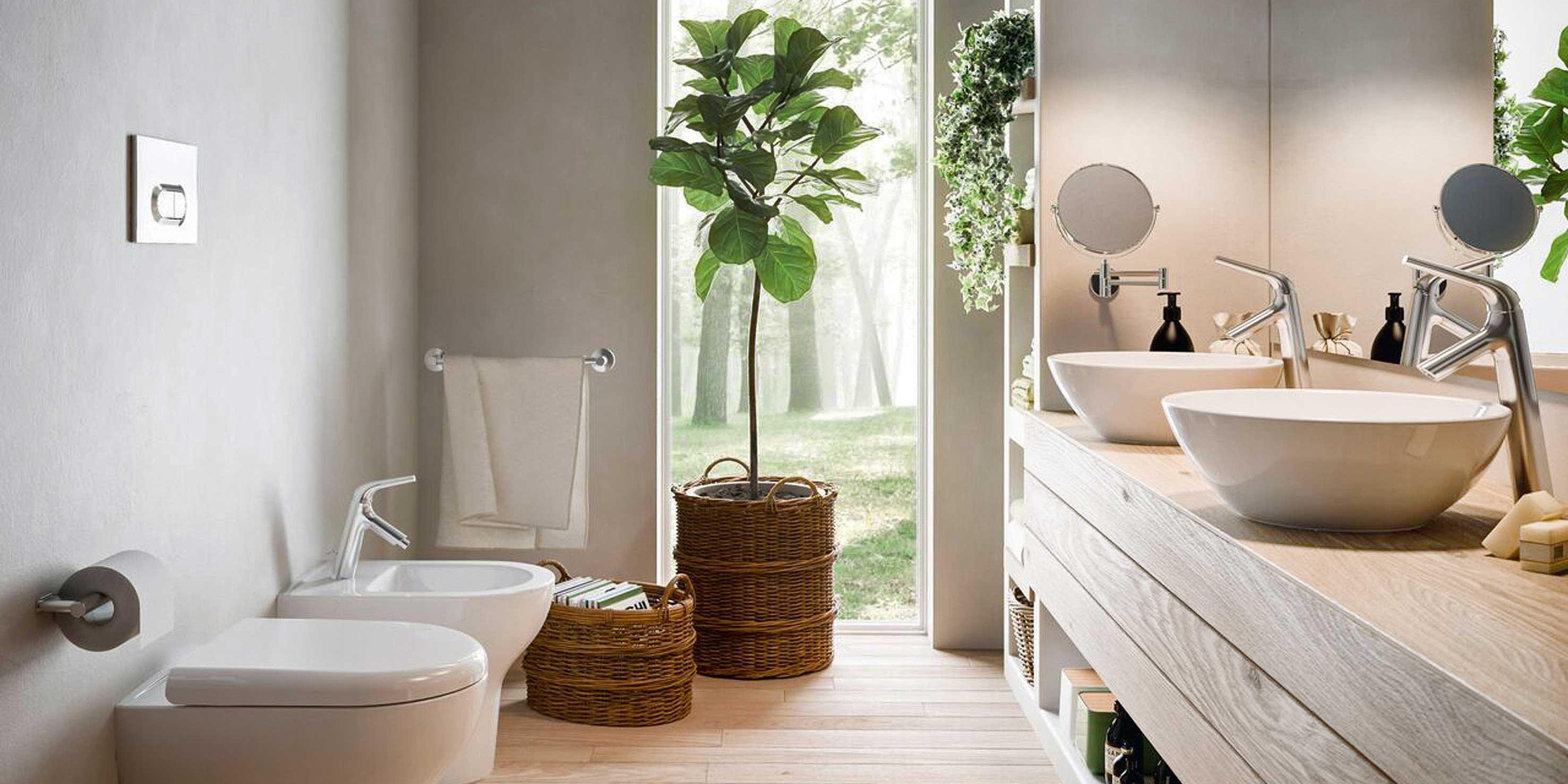 Piante per arredare il bagno  Cose di Casa