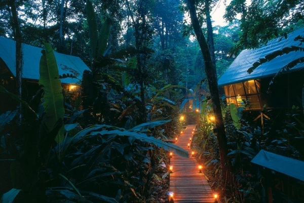 Almonds and Corals  Exotic Tent Camp  Costa Rica Experts