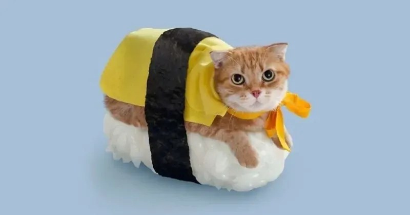 Cat In Fall Wallpaper 30 Cat Costumes That Are Too Cute Costume Wall