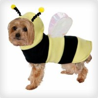 74 Genius Dog and Owner Costumes   Costume Yeti
