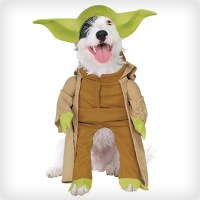 38 Best Dog Halloween Costumes of All Time   Costume Yeti