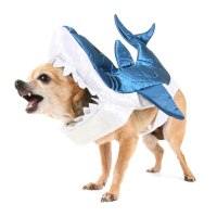 33 Dog Shark Costumes for Your Fur Child | Costume Yeti