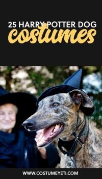 25 Magical Harry Potter Dog Costumes   Costume Yeti